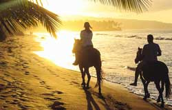 Horseback Tour jaco, Tours Jaco, Rentals Jaco, ATV Jaco, ATV Tours Jaco, ATV Rentals Jaco, Jaco Beach, Costa Rica, Off Road Vehicle Rentals Jaco, Off Road Tours, Extreme Sports,